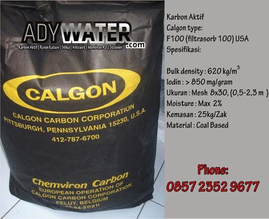 Calgon Filtrasorb 100