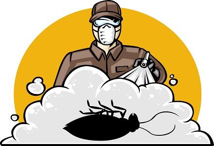 Fumigar cucarachas exterminar cucarachas - Exterminar hormigas en casa ...