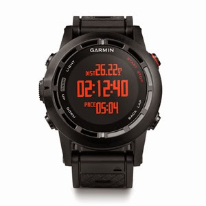 garmin fenix energia sports triathlon