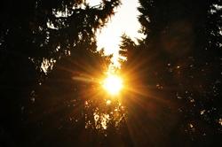 Tiefstehende Sonne...