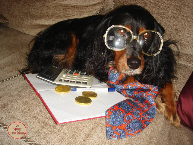 Molly The Wally The Banker.