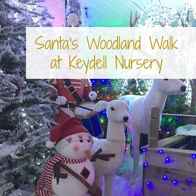 Santa's Woodland Walk at Keydell Nursery