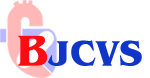 www.bjcvs.org