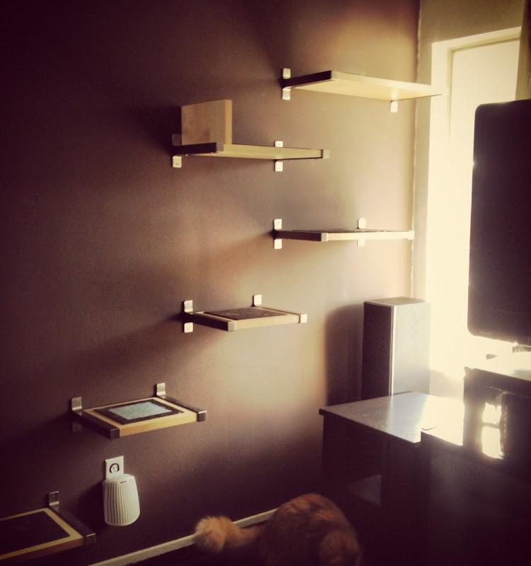 Cat Shelf IKEA