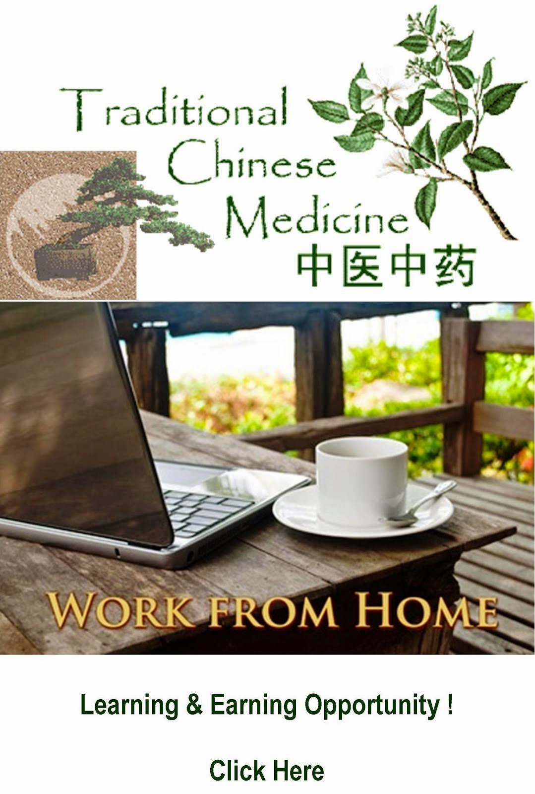 Be A TCM Based Wellness Consultant