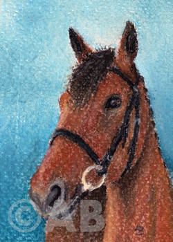 ATC horse pastel portrait by AtelierBrigitte