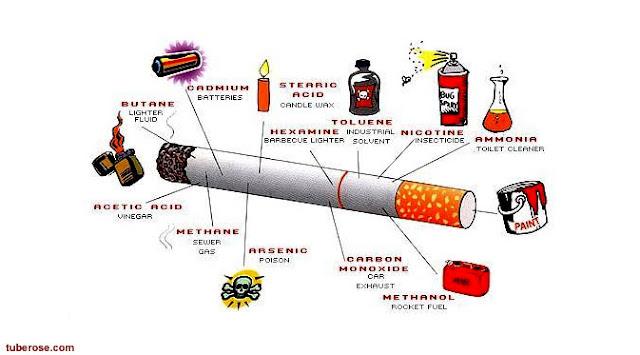 8 Serangan Penyakit Yang Mengincar Pecandu Rokok