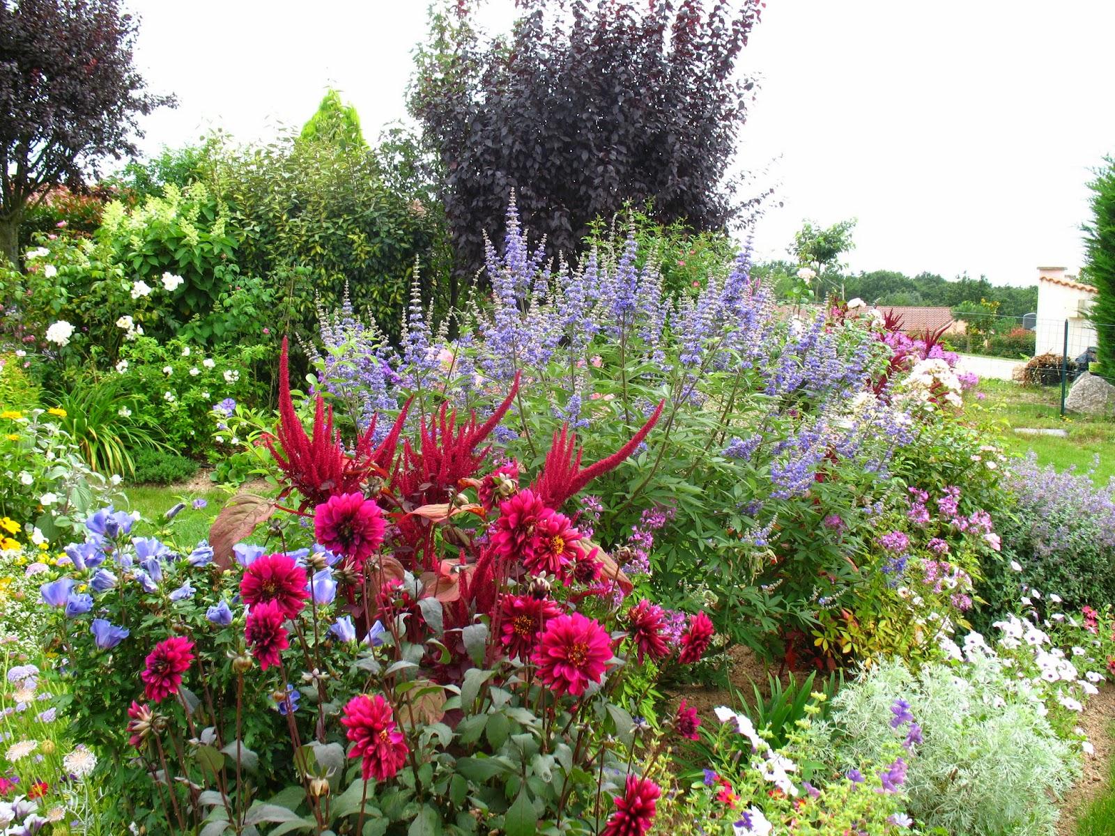Roses du jardin ch neland for Place du jardin aux fleurs