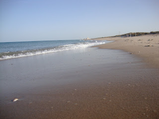 La Devesa Beach Photo - Sand and Sea