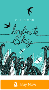 Books like the Fault in Our Stars: Infinite Sky