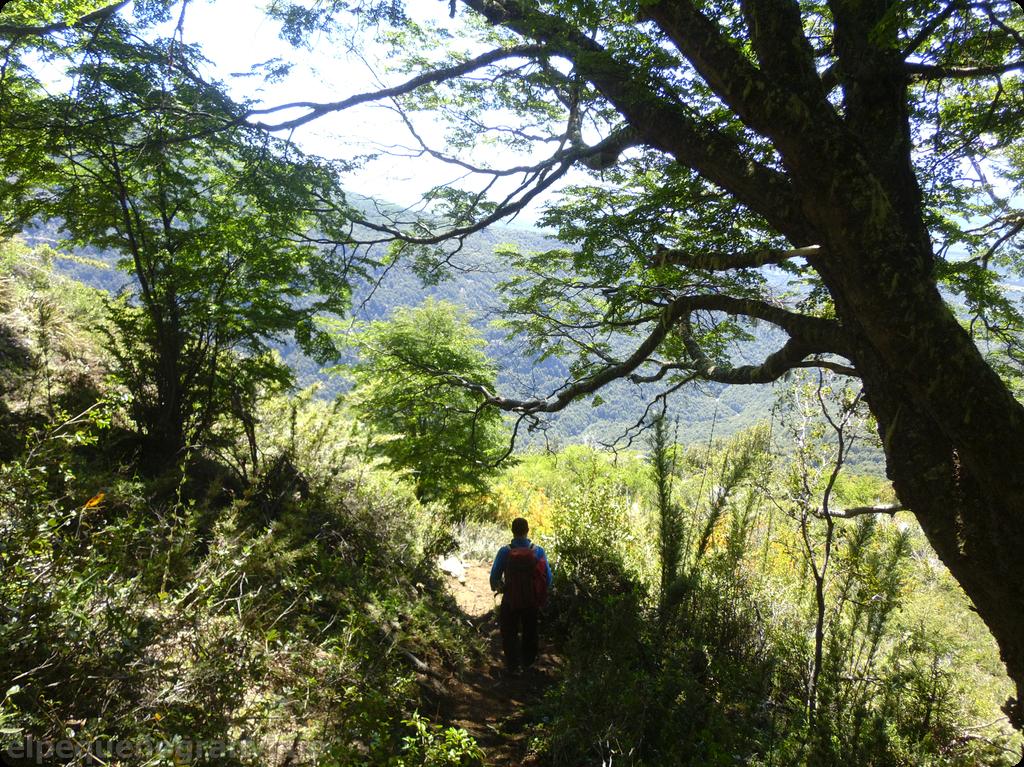 Natación – Retamal, Refugios, El Bolsón