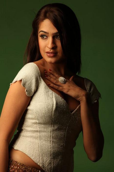 aditi agarwal shoot hot photoshoot