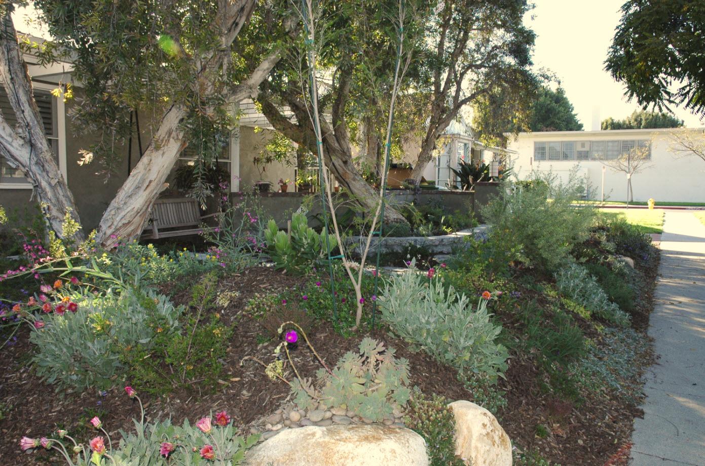 mar vista green garden showcase 3749 redwood avenue cluster 5