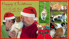 Merry Christmas Flynn and family!