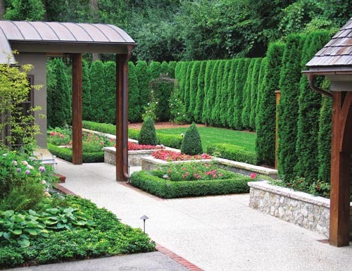 Diy why spend more planting a privacy screen with arborvitaes for Arborvitae garden designs