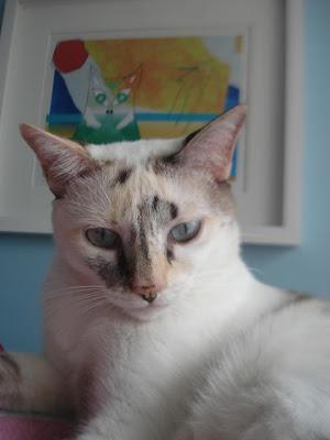Gata Lili posa para foto na frente do quadro do gato