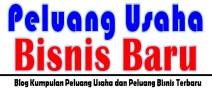 PELUANG USAHA PELUANG BISNIS