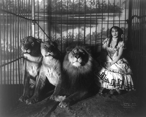 Image result for victorian circus poster