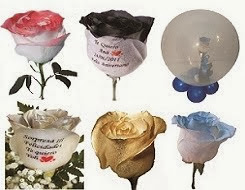 Flores exclusivas e innovadoras