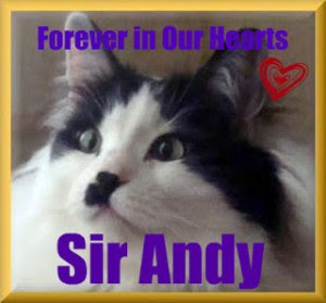 RIP SIR ANDY