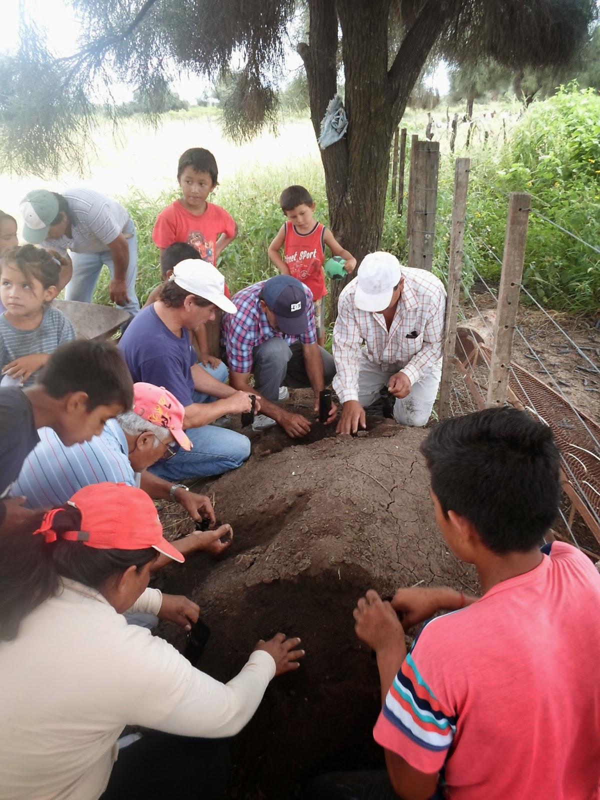Parque chaque o forestal asistencia y capacitaci n en la for Construccion de viveros forestales