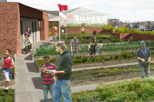Design insider tendencias urbanas de las lechugas for Plantaciones verticales