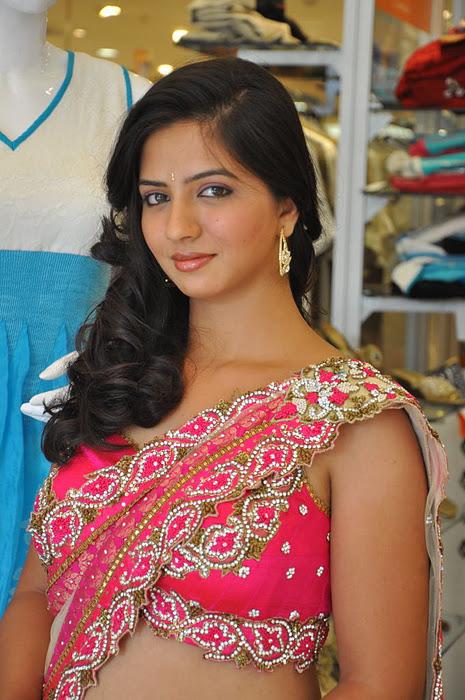 South New Desi Actress Nisha Shah Latest Cute Saree Photos navel show