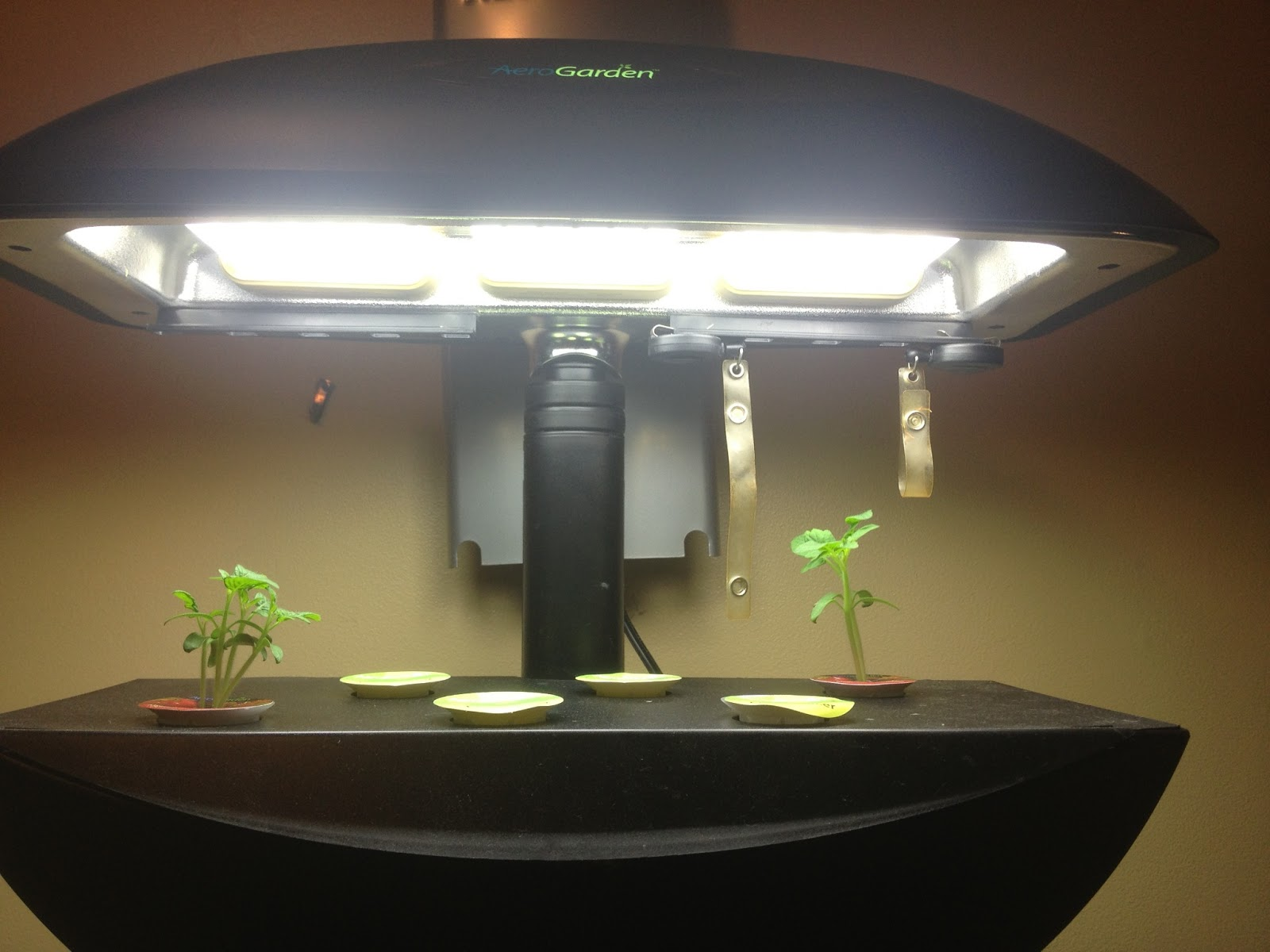 As The Aerogarden Extra I Started Them At Same Time Herbs They Re Growing Much Faster Than Ones Ve Had In Past Look How