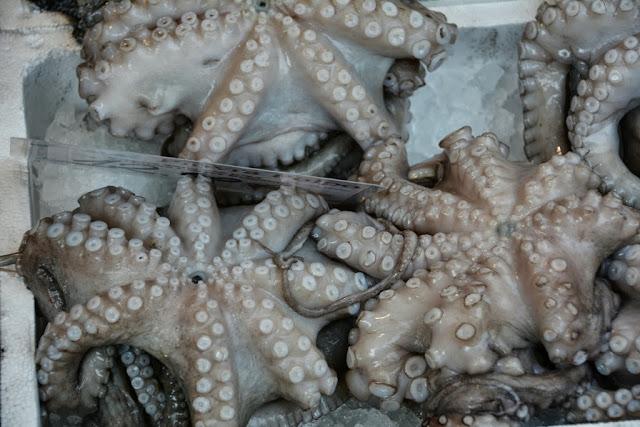 Rialto Fish Market Venice Octopus