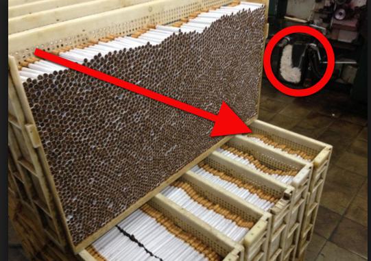 Astagfirullah... Ngerinya !!! Rahasia Pabrik Rokok Ini Bisa Bikin Kamu Berhenti Merokok Saat Ini Juga!