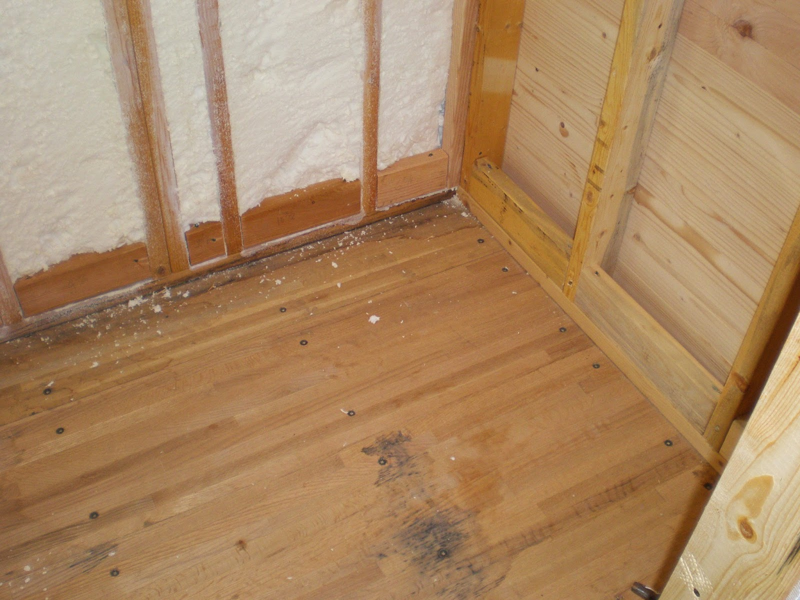 Bathroom Floor Build Up : A tiny home companion bathroom floor eck