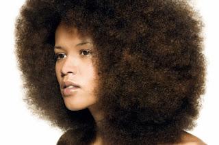 huile de nigelle cheveux crépus afro