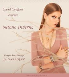 Carol Gregori Porto Velho