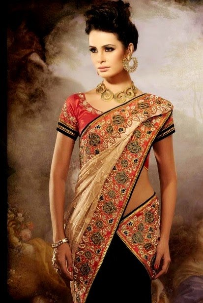 Best Night Party Wear Saree 2014
