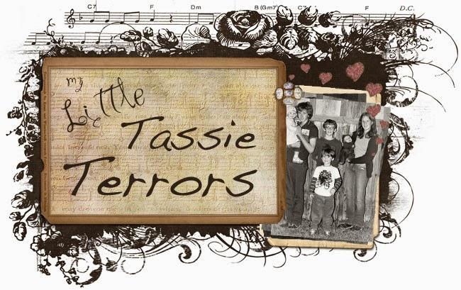 Little Tassie Terrors
