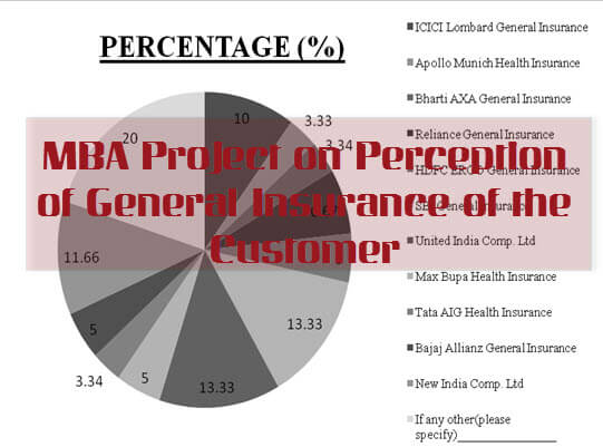 Perception of General Insurance of the Customer