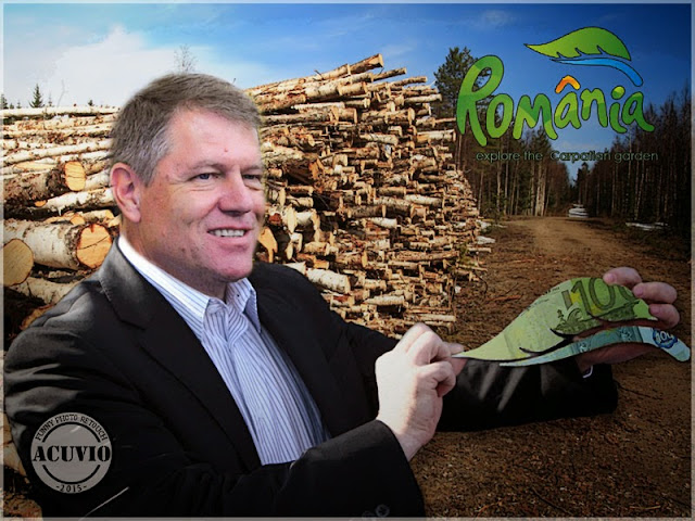 Klaus Iohannis Explore the Carpatian Garden Funny photo