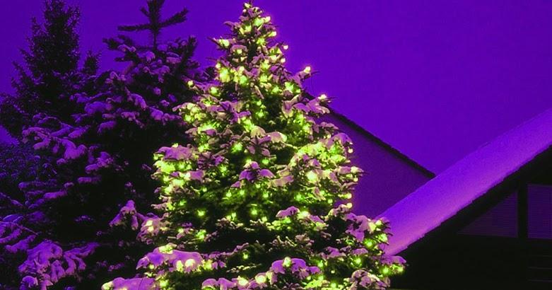 welche farbe haben die christbaumkugeln trend 2011 hot news blog wir bloggen wow. Black Bedroom Furniture Sets. Home Design Ideas