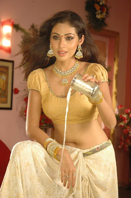 Sada Hot Photo Gallery