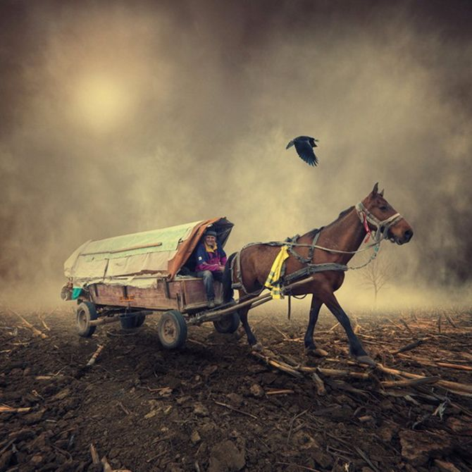 Incredible Photography by Caras Ionut