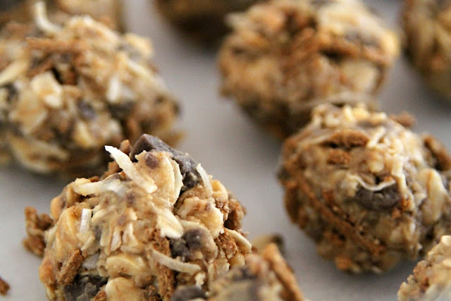 Easy DIY Peanut Putter and Carob Dog Treats