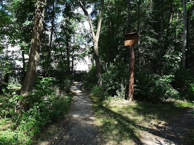 Na przełaj przez las ... do Fortu Bema