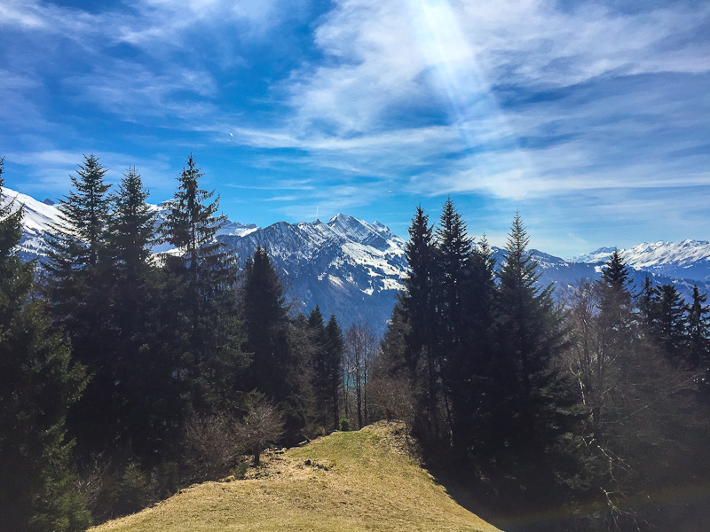 Sun rays shining down and the swiss alps in the background from Harder Klum in Interlaken Switzerland
