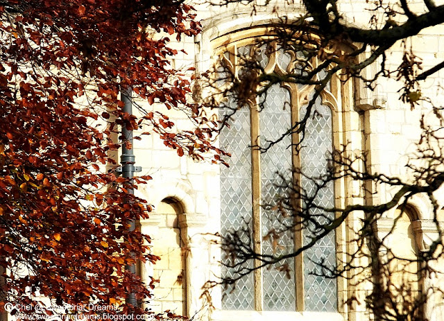 Autumn Beckons Winter @ www.sweetbriardreams.blogspot.co.uk