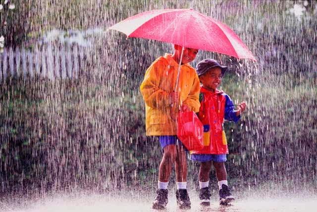 Mau Tau Dari Mana Asal Usul Aroma Hujan