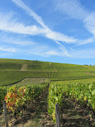 Lines of view – vines and vapour trails near Bué (CRM)