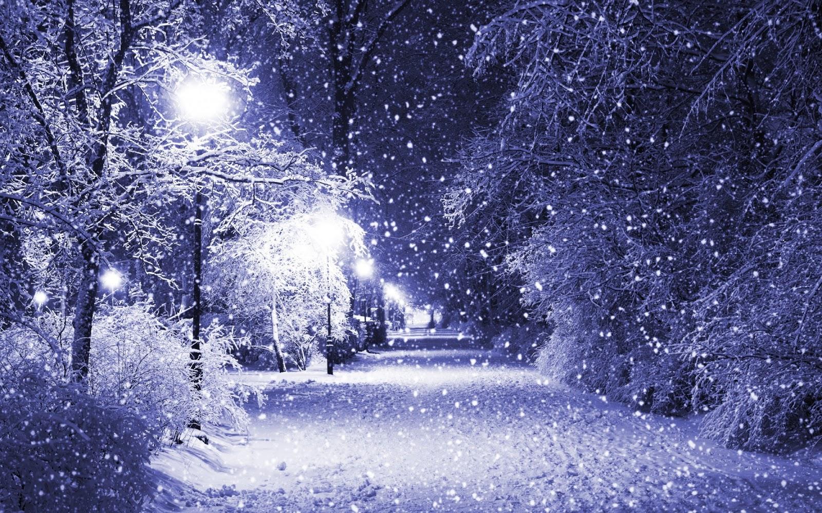 Winter White Fall Park