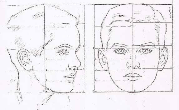 El arte de Arantxa: Proporciones de la cabeza de un niño preadolescente