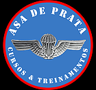 PARCEIRO DO BLOG - ASA DE PRATA