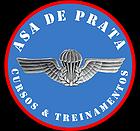 PARCEIRO DO BLOG - ASA DE PRATA
